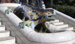 Мозаичная саламандра, прозванная «el drac» («Дракон»)