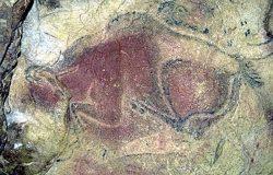 Фрагмент наскального рисунка из пещеры Альтамира