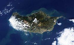 Мадейра - остров лесов