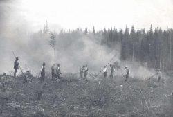 Подсечно-огневое земледелие в Финляндии